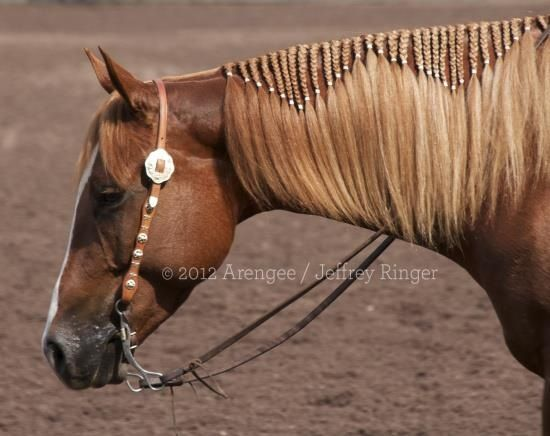 This would look so cool on my horse.