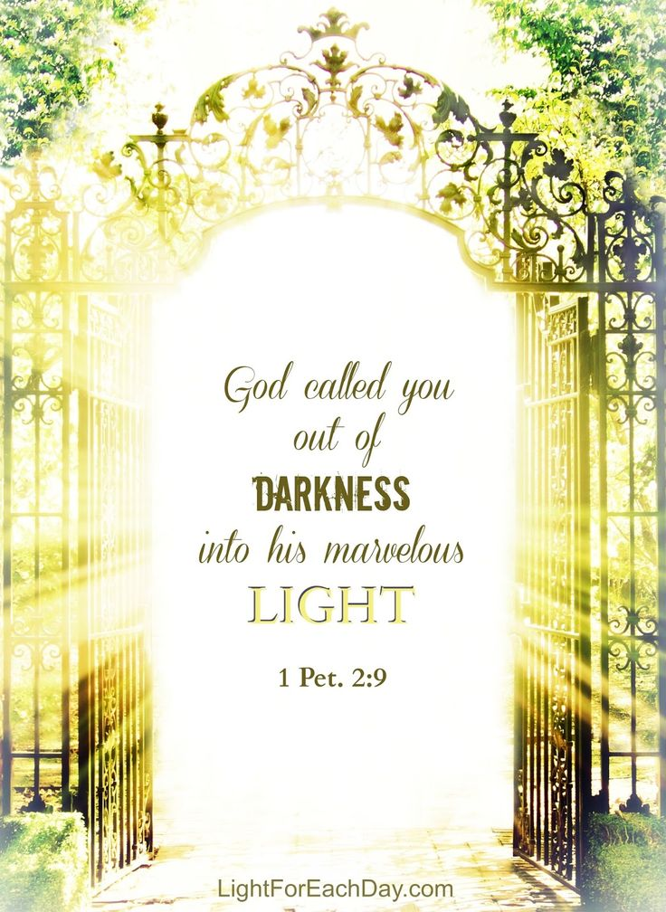 [God] called you out of darkness into his marvelous light. You...are called to belong to Jesus Christ, called to be saints. 1 Peter 2:9; Romans 1:6; Romans 1:7 (ESV)