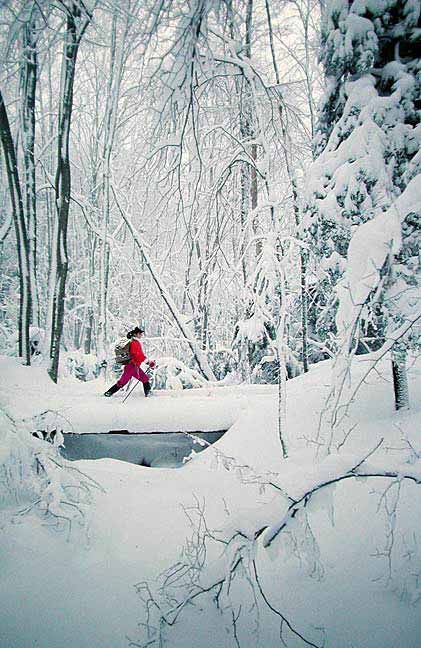 Learn how to cross country ski at Deep Creek