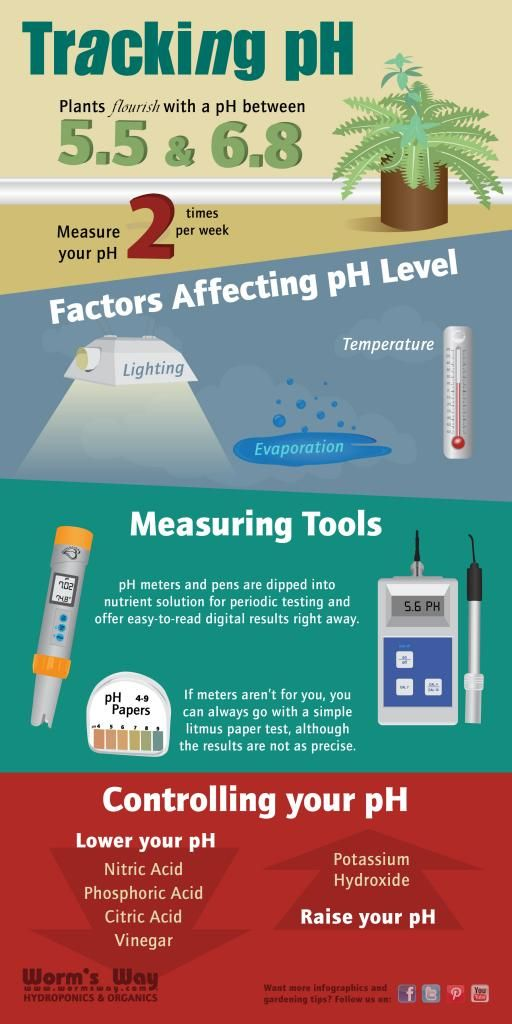 Infographic on Tracking your pH #hydroponics