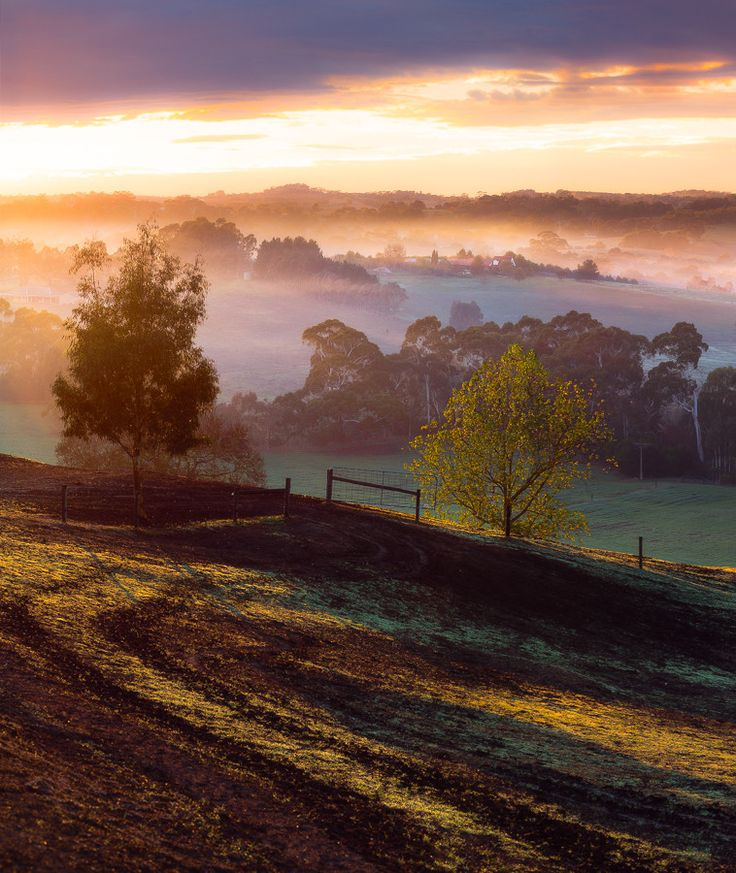 Adelaide Hills, Australia. To learn more about Adelaide | South Australia, click here: http://www.greatwinecapitals.com/capitals/adelaide-south-australia