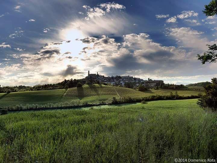 Vignale Monferrato. Foto di Domenico Rota