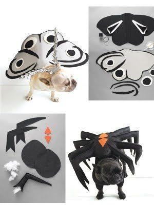 Disfraces para perros, originales y divertidos