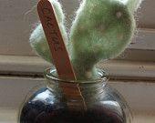 Needle Felted Cactus Sculpture