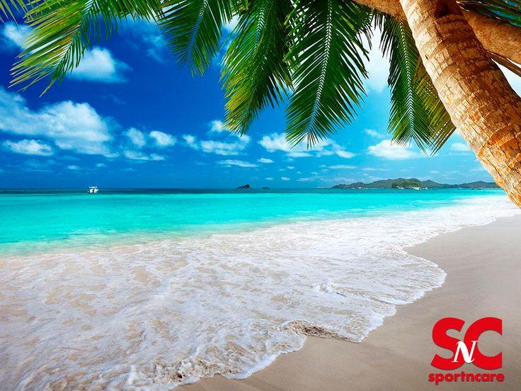 Enjoy your day at the beach with a SportNCare microfiber towel by your side. Disfruta tu día en la playa con una toalla de microfibra SportNCare a tu lado.
