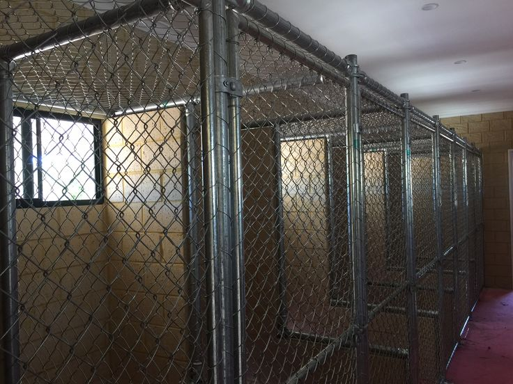 Chain mesh fencing cattery Perth installation.