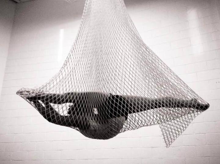 Ana Gabii Gutierrez, net, aerial