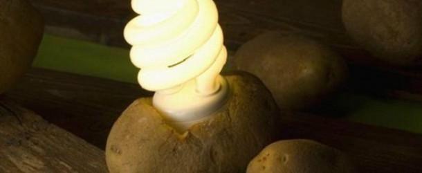 ¿Iluminar una habitación durante 40 días sólo con una patata?