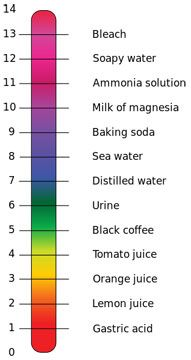 Good lesson on red cabbag ph with a Diagram that shows a 0 to 14 scale listing gastric acid, lemon juice, orange juice, tomato juice, black coffee, urine, distilled water, sea water, baking soda, milk of magnesia, ammonia solution, soapy water, bleach.