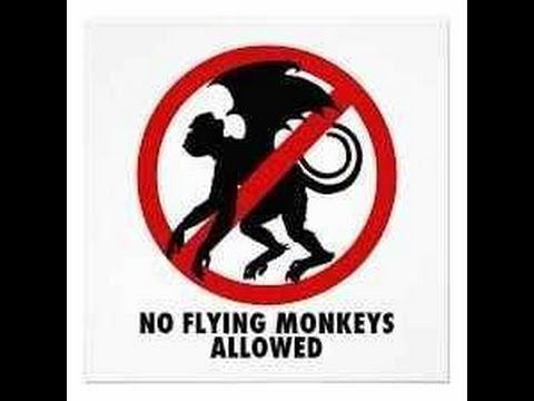 Let the Narcissist's Flying Monkeys Live with Their Choices - YouTube