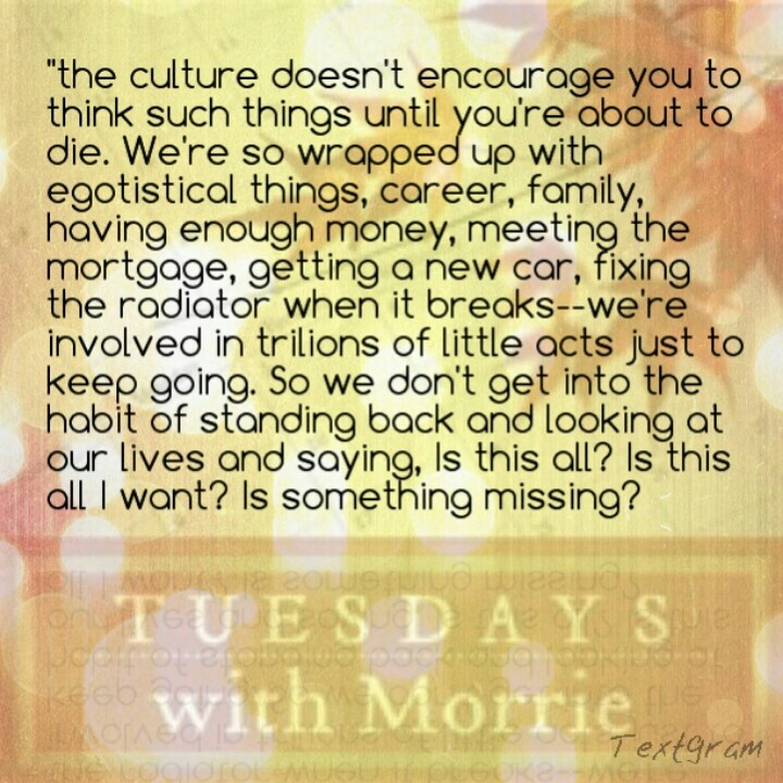 authors thesis of tuesdays with morrie Mitch albom, is the author of tuesdays with morrie and serves as one of the main characters for the novel within the novel, albom is a writer for a sports column in the detroit free press and possess a masters in journalism.