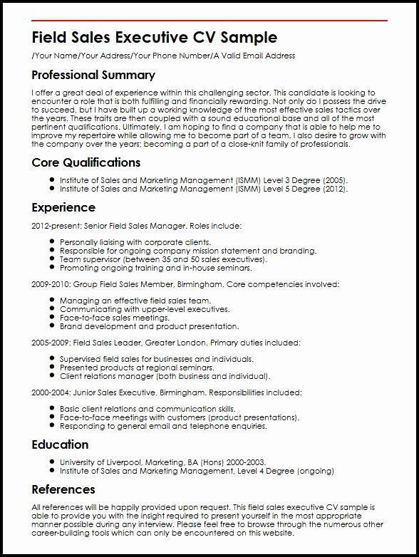 Sales Executive Resume Examples Fresh Best Resume Format For Sales Executive Romes Danapardaz In 2020 Resume Examples Executive Resume Job Resume