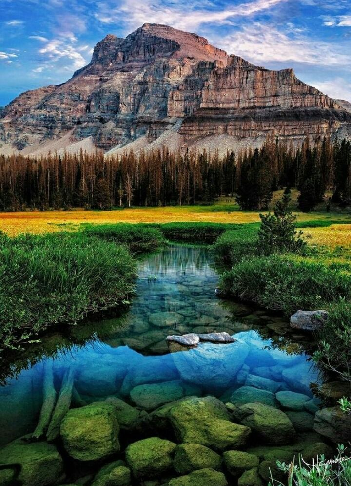 Uinta Mountains Utah By John Haymore Uinta Mountains Utah Stream River Nature Landscape Nature Photography Beautiful Nature Nature