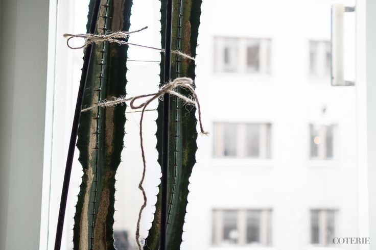 Two friends, one blog driven by a passion for fashion and interior. Join our coterie at www.coterie.fi   #Coterieofficial #Coterie #blog #interior #home #deco #decoration #decor #white #Scandinavian #scandinavianstyle #scandinatiandesign #cactuses #catus #cacti