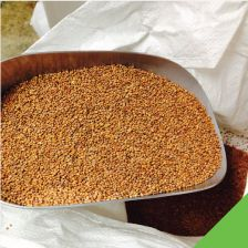 Mountain Valley Seed out of Utah -Bulk Seed