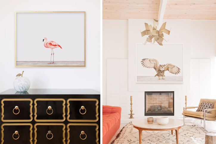love all the prints from the animal shop.