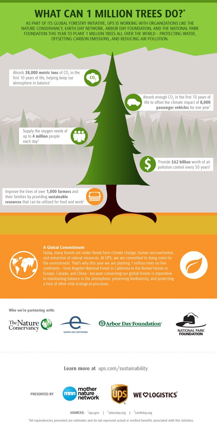 What can 1 million trees do? [infographic] | MNN - Mother Nature Network