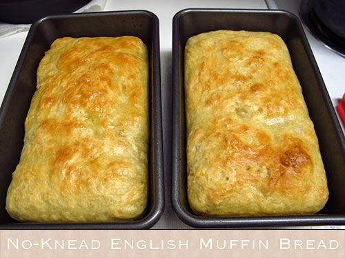 No-Knead English Muffin Bread ....    If you are an English muffin lover... you will love this easy to make English muffin bread.