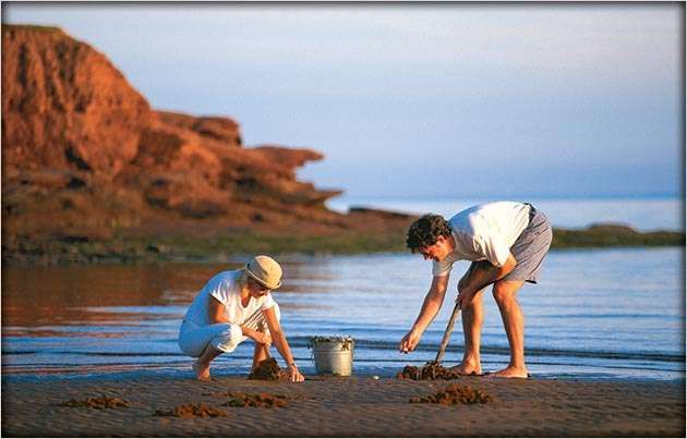 Digging on the shores. Via @Claire Decker