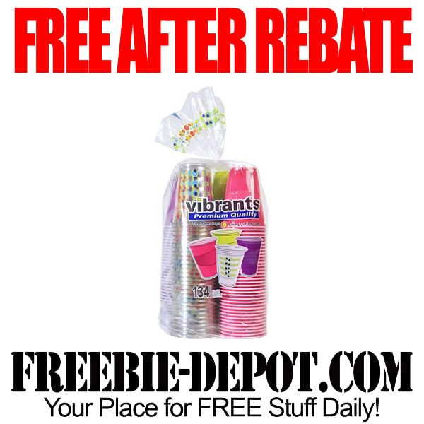 FREE AFTER REBATE – 134 Festive Summertime Cups – FREE Plastic Cups – $9 Value – Exp 6/2/15  #freebate