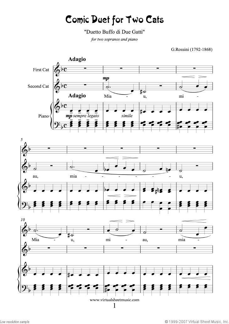 Cats Memory Song Analysis Lesson