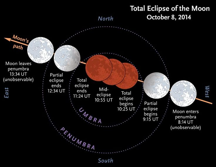 "Stages of the 10/08/14 ""blood moon"" lunar eclipse starting at 1:15am PT (UT-8). 4hr livestream from LA's Griffith Obervatory here: http://new.livestream.com/GriffithObservatoryTV"