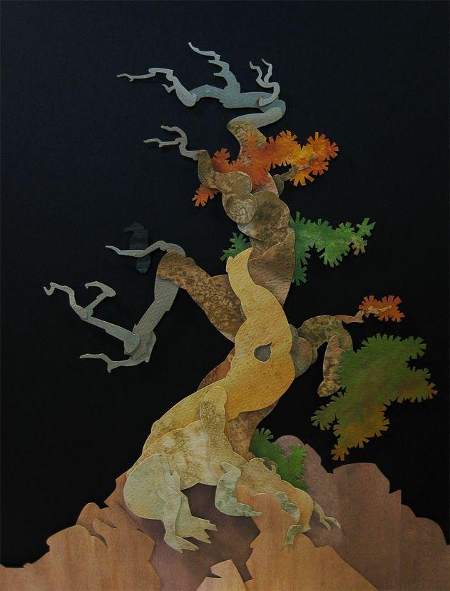 Whitebark Pine by WonderDookie.deviantart.com on @deviantART