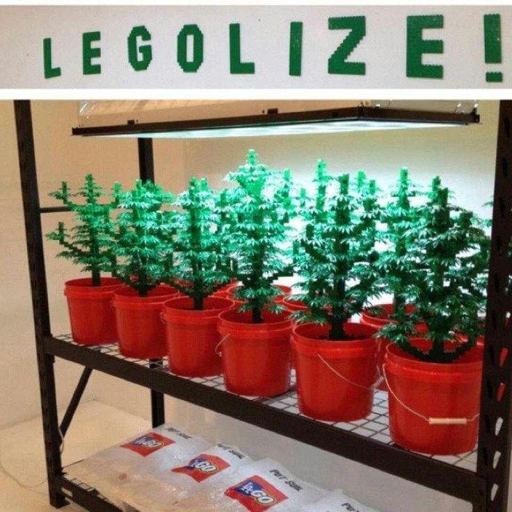 Resultado de imagem para lego cannabis