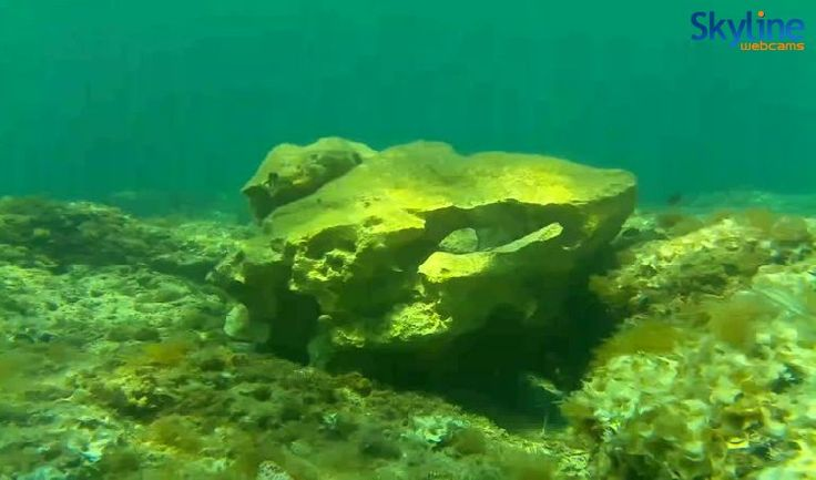 Live Cam Underwater cam at St. Julian's Bay