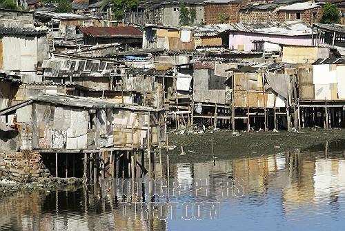 Slum ( Favela ) in the mangroves of Recife , Brazil ...