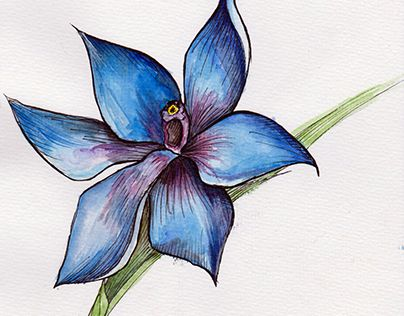 """Check out new work on my @Behance portfolio: """"Exotic Flower"""" http://on.be.net/1GC3OKZ"""