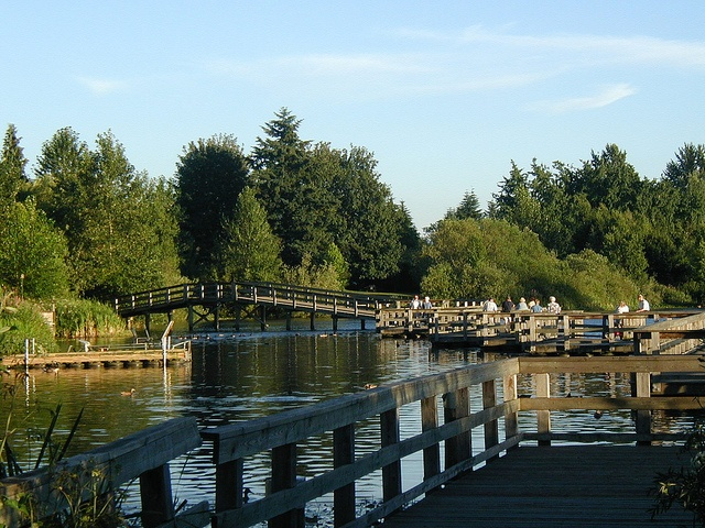 Mill Lake in Abbotsford, BC - my home town and where most of our family still lives.