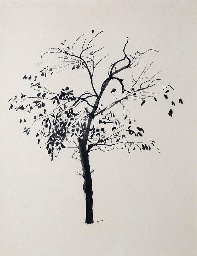 петр митурич, лиственное дерево тушью