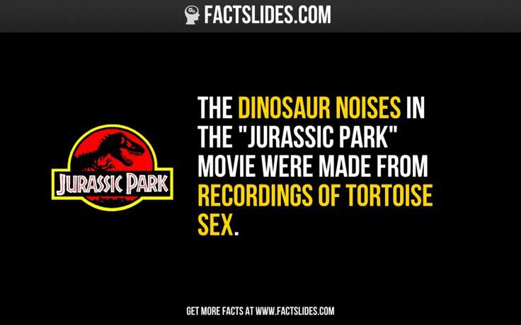 random fun sex facts