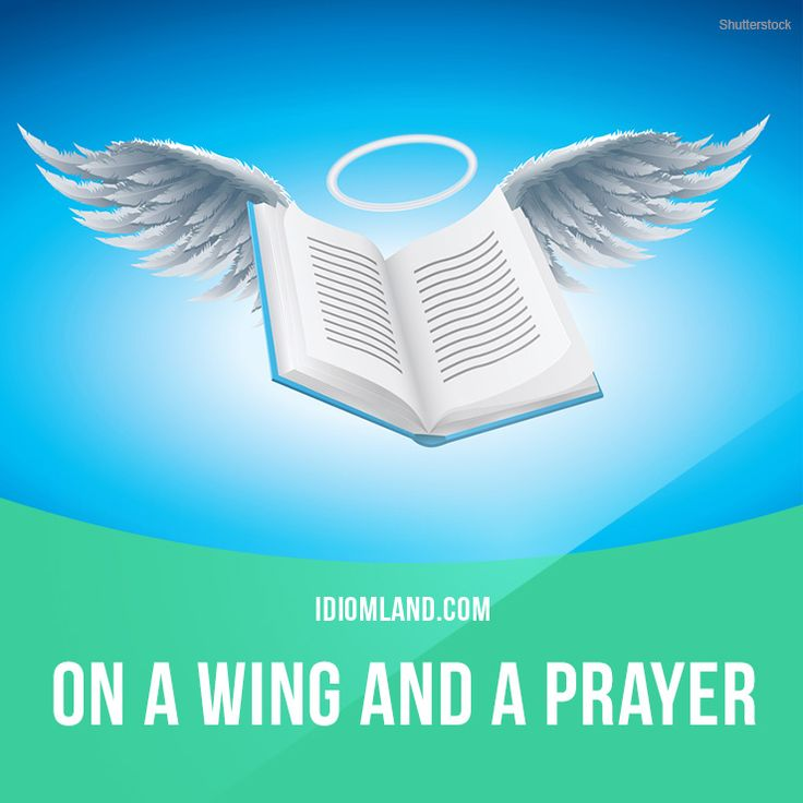 """On a wing and a prayer"" means ""with a very small chance of success"". Example: The inexperienced baseball team was on a wing and a prayer as they prepared to play the defending champions."