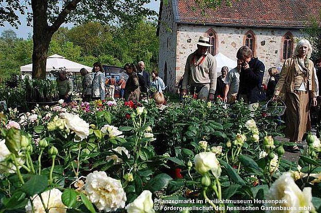 Herbst-Pflanzenmarkt im Freilichtmuseum Hessenpark, D-61267 Neu-Anspach im Hochtaunuskreis, Hessen, 03.09.-04.09.2016