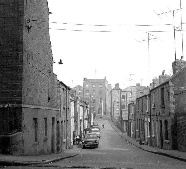 The backyards of Summerhill