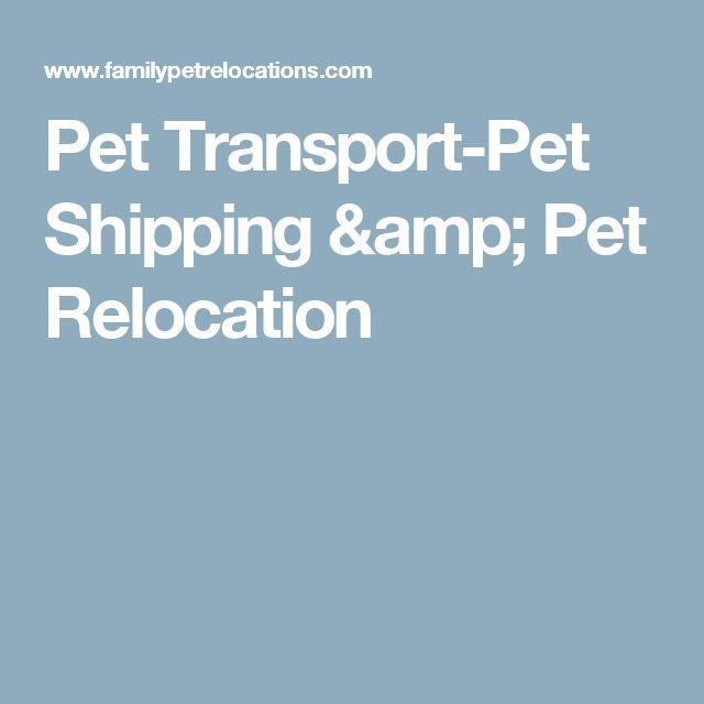 Pet Transport-Pet Shipping & Pet Relocation