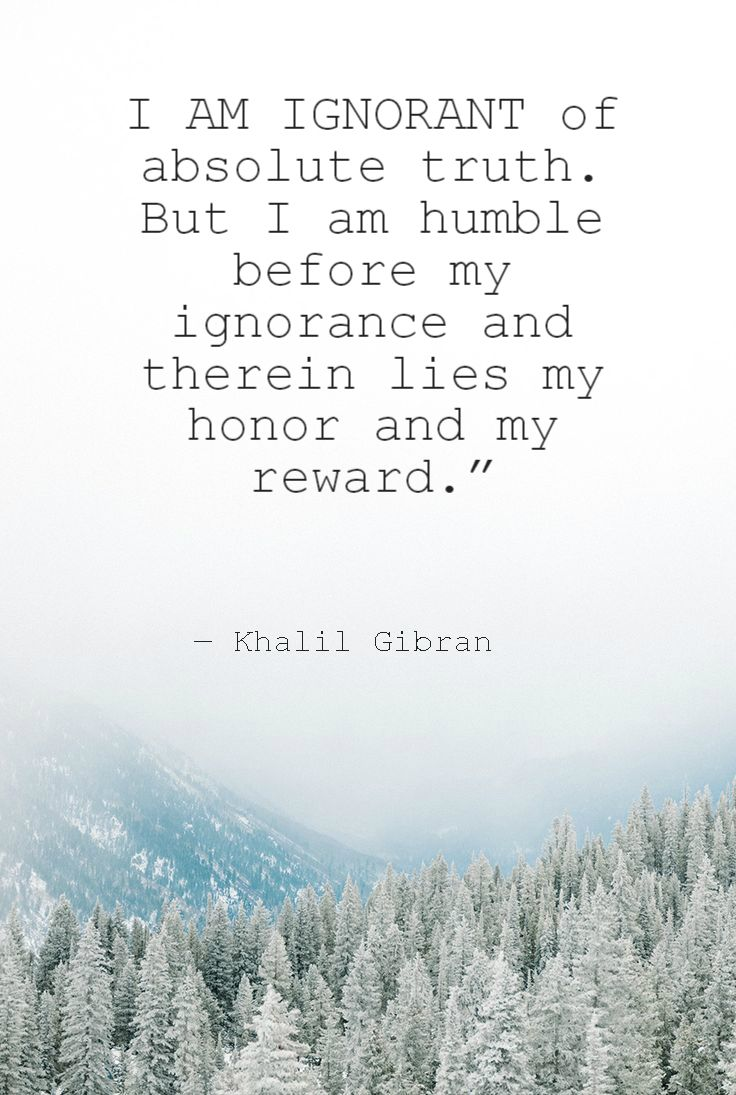 """I am ignorant of absolute truth. But I am humble before my ignorance and therein lies my honor and my reward.""  ― Kahlil Gibran ..*"