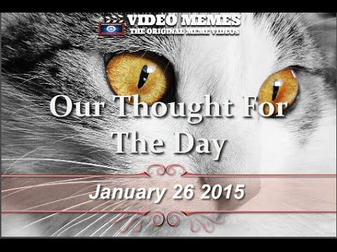 Social Video Memes 01262015 | Social Video Marketing  | Thought For The Day