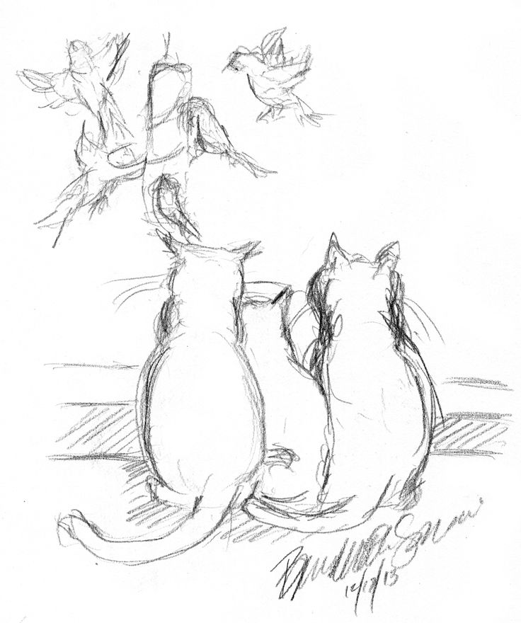 The Creative Cat - Daily Sketch: Birdwatching, a Family Activity