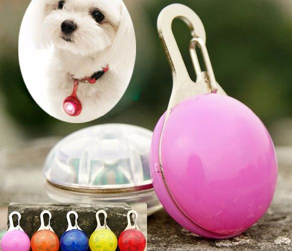 I'm auctioning 'LED Dog tag Pendant Collar Puppy Safety ID tag' on #tophatter