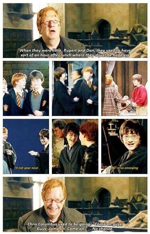 Best 25+ Harry Potter Memes Ideas On Pinterest   Funny ...