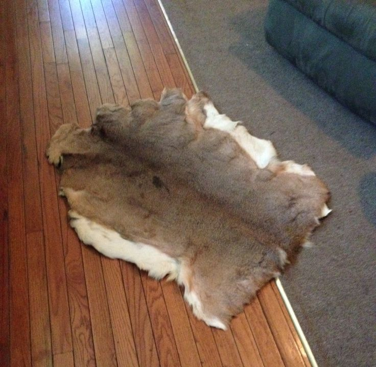 Hand Tanned Buckskin Rug ( second angle )