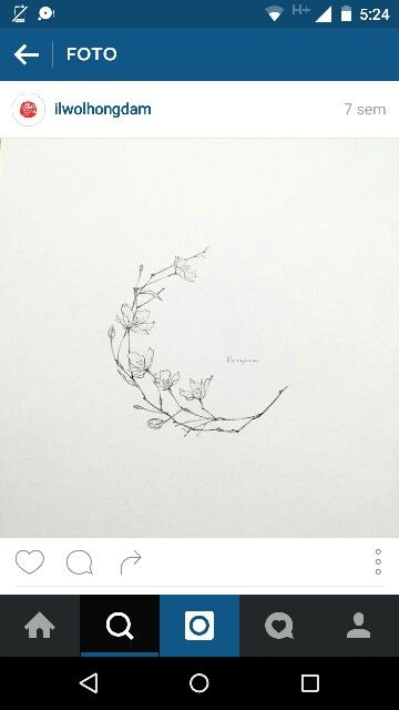 Moon flower                                                                                                                                                      More