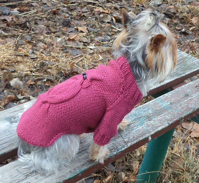 Dog clothing,girl dog clothes,dog sweater.knit dog from Crocheted booties, blanket, exclusive garments are handmade   LyudmilaHandmade by DaWanda.com