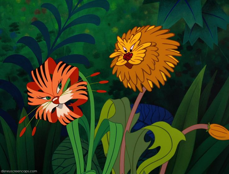 lion and tiger lily