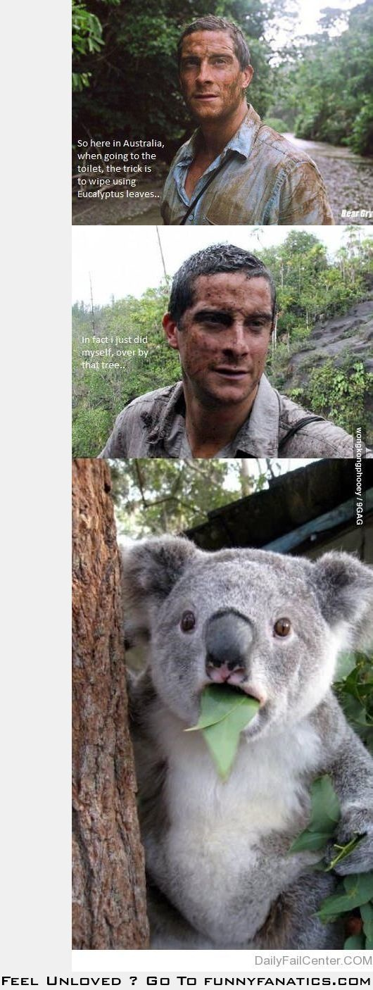 Bear Grylls tips on how to go when in Australia...