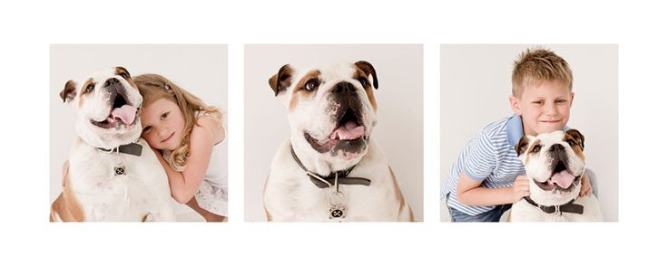 Etta ImagesCuddles in the Christchurch Portrait Studio for 2 children and their much loved pet - Etta Images