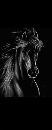 Аватар вконтакте Белый силуэт лошади на черном фоне (© Akela), добавлено: 25.02.2015 03:11